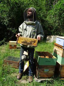l'apiculteur tient un cadre de ruche plein d'abeilles et un enfumoir