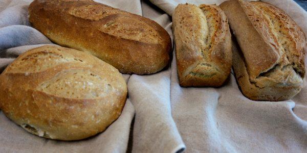 les pains bis farine T80 blés anciens bio de soleil levain boulangerie artisanale rurale à Montpezat d'Agenais
