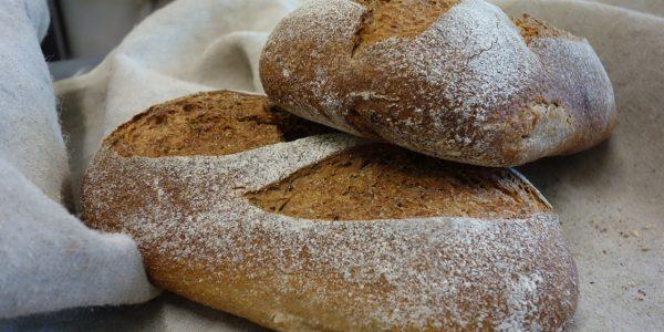 pain complet farinés au levain avec des farines bio de blés anciens dans la boulangerie artisanale soleil levain à montpezat d'agenais