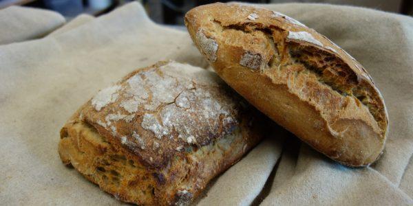 deux pains farinés sont posés sur une toile de couche dans un fournil bio du lot-et-garonne